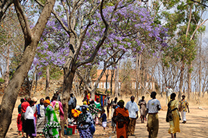 2014-Tosamaganga,-Tanzania-2